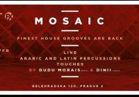 Mosaic House with Dinii /Fr/, Lumiere, Vilém