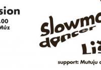 Slowmotiondancer & Lišaj - Radio Wave Live Session