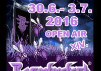 Basinfirefest 2016