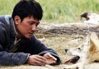 Kino Jas: Totem vlka