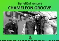 Chameleon Groove  Depeche Mode revival