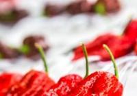 Chillibraní & Chilližrout 2016 - European hot food festival