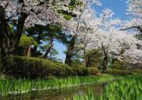 Japonsko neznámé - ze zasněžených hor na tropické ostrovy