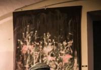 Richard Baksevanidis & Fuzzy2102 - akusticky na palubě