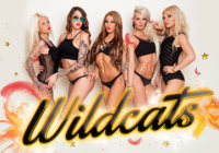 Wildcats by JP // 14.10. // Pantheon