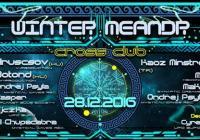 Winter Meandr