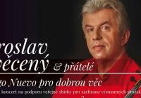 Benefiční koncert na podporu veřejné sbírky
