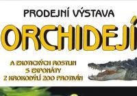 Prodejní výstava orchidejí a exotických rostlin