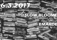 Slow Bloomer // Emardee