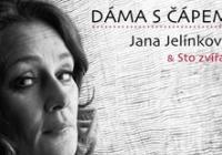 Jana Jelínková  Sto zvířat - Dáma s čápem