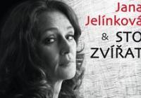 Sto Zvířat + Jana Jelínková