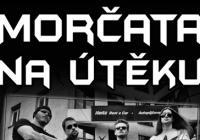 Morčata na útěku / RAiN / Anarchia