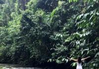Peru - amazonská očista aneb 10 měsíců mezi šamany
