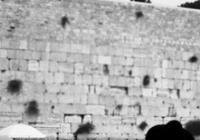 Boj o Jeruzalém / Jiří Kalát
