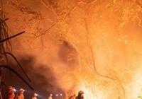 Amazonie v plamenech (Martin Trabalík)