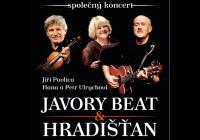 Jiří Pavlica & H. a P. Ulrychovi Hradišťan & Javory Beat
