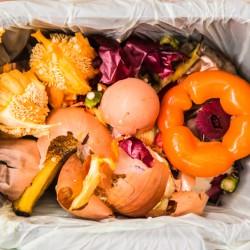 Zero Waste: Nákup + Vaření + Kompostování