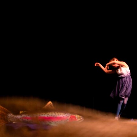 Závěrečné vystoupení tanečních skupin ze studia Tanchi