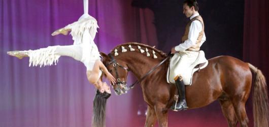 Appassionata - hvězdná jezdecká show
