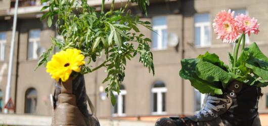Informuji.cz vstoupilo do ulic aneb Guerrilla gardening v Praze