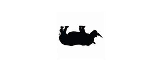 Vernisáž bez nosorožce