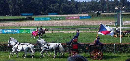 Pardubicemi se prohnali Koně v akci