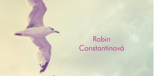 Léto, kdy jsme se potkali od Robin Constantin: příjemná oddychovka pro mladší (recenze)