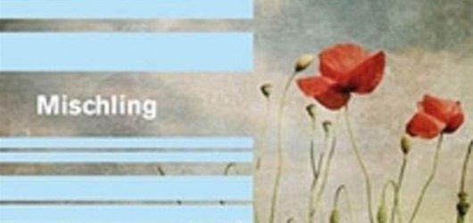 Román Mischling vás vhodí do děsivého období Osvětimi a rukou doktora Mengeleho