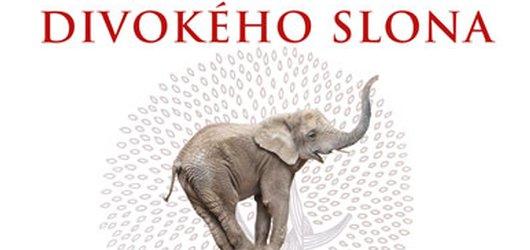 Jak se naučit bdělosti? Jak vycvičit divokého slona přináší plno osvědčených rad