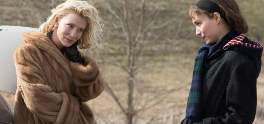 Carol se problémové romance pouze dotýká, sází spíš na dobré obsazení