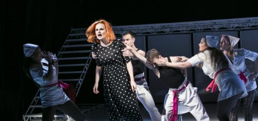 V Divadle Na Fidlovačce vystupují Ženy na pokraji nervového zhroucení