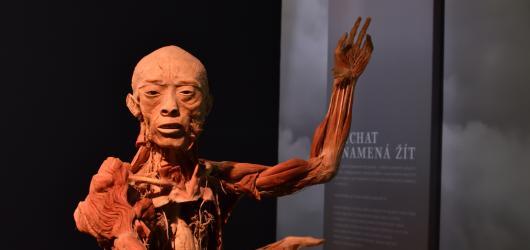 Budete mít na vysvědčení samé jedničky? Výstava Body The Exhibition připravuje pro nadané žáky speciální akci