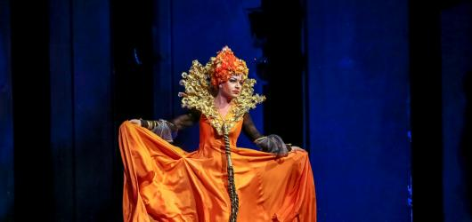 Dětský muzikál Královna Kapeska láká na známá jména. Své role mají Slováčková i Gránský