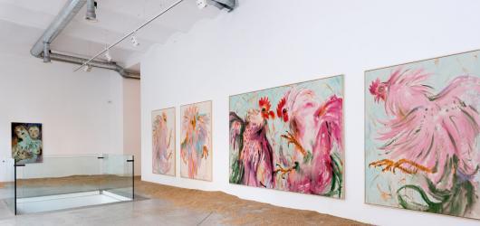 Provokativní slovenský umělec Andrej Dúbravský vyměnil erotiku za drůbež. S kohoutí výstavou se vrací do DSC Gallery