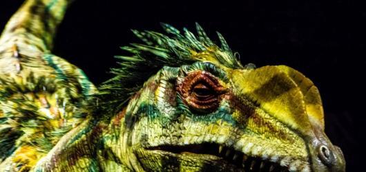 Dinosauři napadnou Prahu! Do metropole se vrací unikátní show oceněna řadou cen