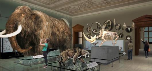 Národní muzeum chystá nové expozice. Historická budova se částečně zpřístupní v říjnu