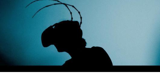 Kafkovskou proměnu v brouka můžete na vlastní kůži zažít v pražském Goethe-Institutu