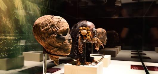 Tajemství skryté v gáze. Výstava Mumie světa odhaluje historii srkze pohřební rituály