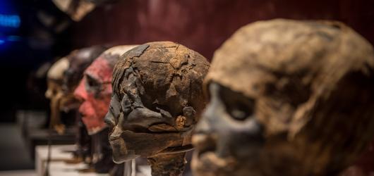 Mumie z celého světa budou k vidění v Praze. Tajuplná výstava začíná již v únoru