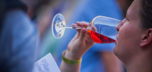 SOUTĚŽ: Vyhrajte permanentky na Pálavské vinobraní v Mikulově