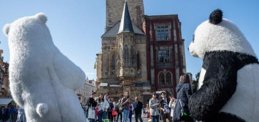 Demonstrace proti Babišovi, vítězství Čaputové i příliv turistů vévodí tématům Czech Press Photo 2019