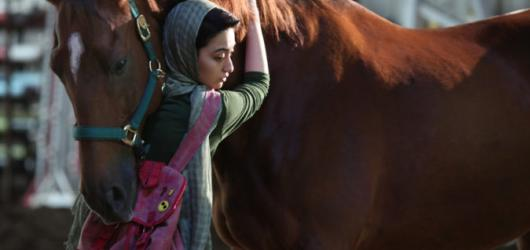Festival Íránci rozdal ceny nejlepším snímkům. S výběrem středovýchodní kinematografie míří do Brna a Bratislavy