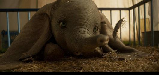 Bez povznášejícího pírka v chobotu. Dumbo se zavděčí všem věkovým kategoriím, a přesto nevyužil svého potenciálu
