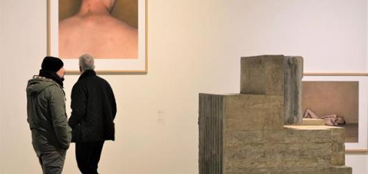 Vitální kolaps: Výstava k zamyšlení i potěše oka