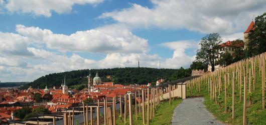 Pražské vinice se otevřou veřejnosti. Nezmeškejte svátek vína a prohlídku běžně nepřístupných míst
