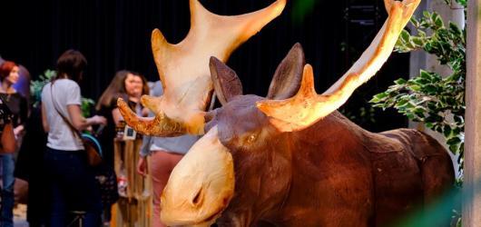 Čokoládový festival obrazí 17 českých měst, chystá i výstavu sladkých soch