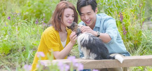 Snímek Psí poslání 2 ukazuje nekonečnou lásku mezi psem a člověkem, ale také menší originalitu a nápaditost