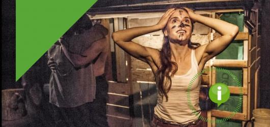 Dokument Collective, herní peklo i rubínovská Thelma se Selmou. Nabízíme kulturní tipy na pátek 20. března