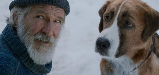 Neohrožený digitální psí hrdina se vydává na dobrodružnou cestu pro celou rodinu. Volání divočiny je asi nejambicióznější adaptací románové klasiky Jacka Londona
