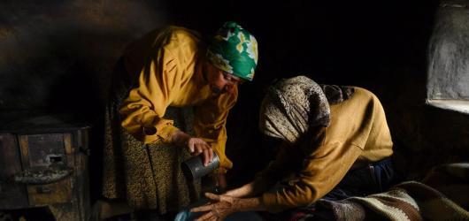 Hořkosladký dokument Země medu dokáže bodnout i pohladit. Naturalistické svědectví makedonské včelařky lyricky poukazuje na neutuchající střet člověka s přírodou